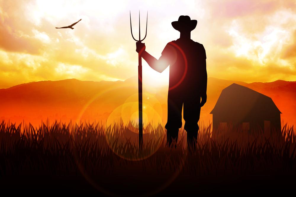 Δεν προβλέπεται η δυνατότητα αναδρομικής ένταξης στο ειδικό καθεστώς αγροτών