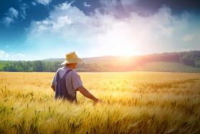 Αγρότες - Μετάταξη από το ειδικό καθεστώς στο κανονικό - Διευκρινίσεις για την υποβολή δήλωσης μεταβολών