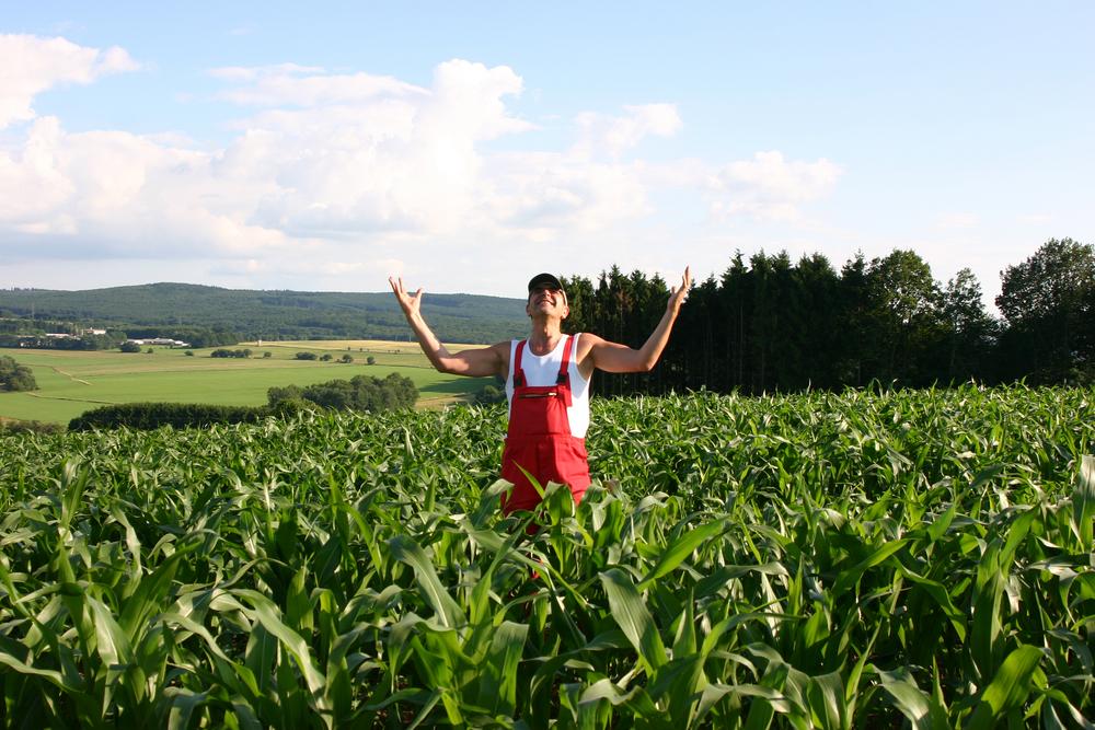 Ενίσχυση μέχρι 7.000 ευρώ για κάθε αγρότη και 50.000 ευρώ για κάθε μικρομεσαία αγροτική επιχείρηση που επλήγησαν από τον κορωνοϊό