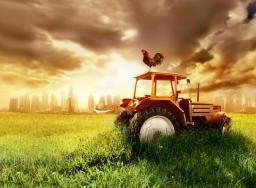 Μέσω ταχυμεταφορών ή μέσω email οι αιτήσεις μετάκλησης πολιτών τρίτων χωρών για απασχόληση σε αγροτικές εργασίες