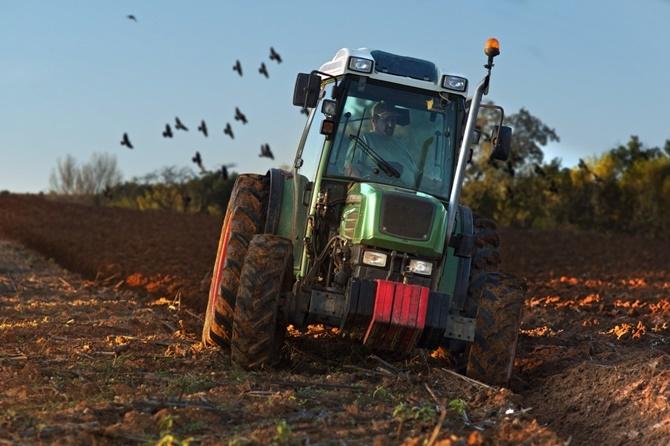Κατ' εξαίρεση απασχόληση στην αγροτική οικονομία πολιτών τρίτων χωρών που παραμένουν στην χώρα υπό καθεστώς αναβολής απομάκρυνσης