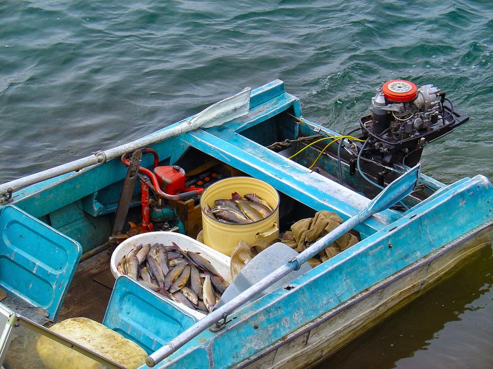 Η φορολόγηση του εισοδήματος από αλιεύματα αλιευτικών σκαφών ολικής χωρητικότητας μέχρι 10 κόρους