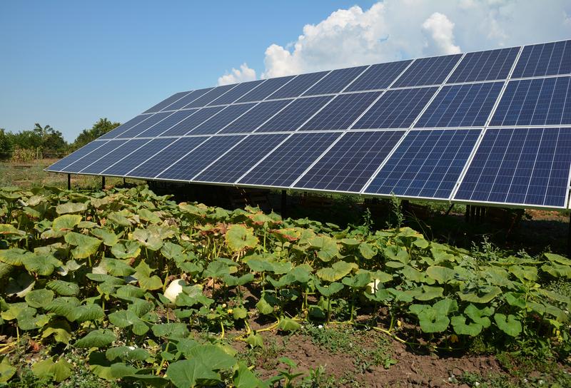 Δημοσιεύθηκε ο Κανονισμός Βεβαιώσεων Παραγωγού Ηλεκτρικής Ενέργειας ΑΠΕ και ΣΗΘΥΑ - Από την 1η έως την 21η Δεκεμβρίου η υποβολή αιτήσεων