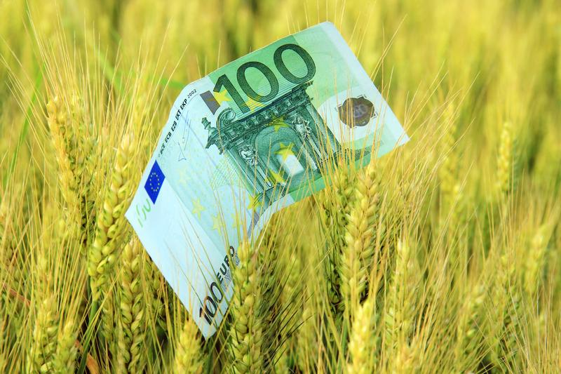 Νέα δράση από το Πράσινο Ταμείο για τη στήριξη και την ενίσχυση των μικρομεσαίων επιχειρήσεων σε Κοζάνη, Φλώρινα και Μεγαλόπολη