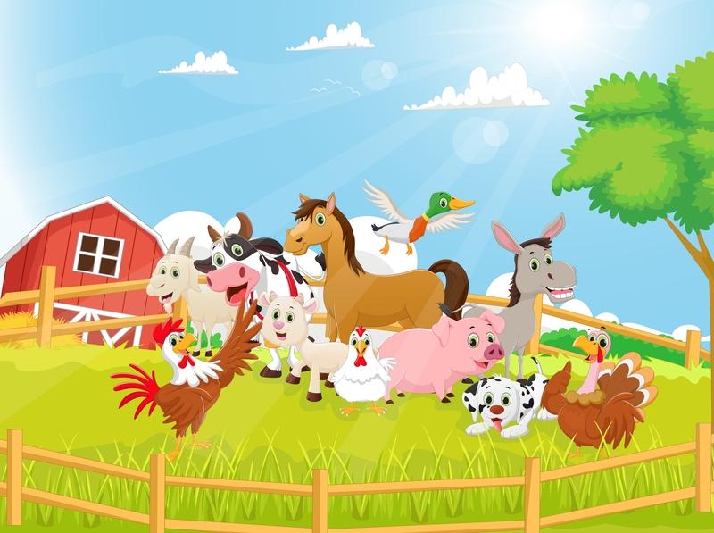 Κτηνοτροφικές εγκαταστάσεις: Σε δημόσια διαβούλευση αναρτάται σήμερα το νομοσχέδιο