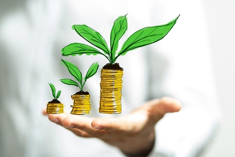 Βιώσιμη χρηματοδότηση: Προς ένα κοινό σύστημα ταξινόμησης των πράσινων επενδύσεων