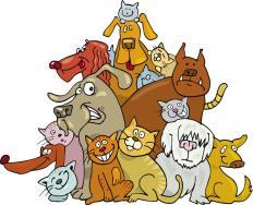 Δημιουργία Εθνικού Μητρώου Ζώων Συντροφιάς - Ηλεκτρονικό βιβλιάριο και ψηφιακό ιατρικό ιστορικό για τα ζώα συντροφιάς